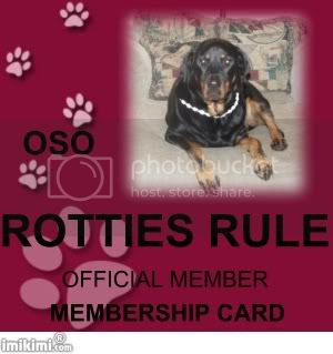 Rotties Rule Member Oso