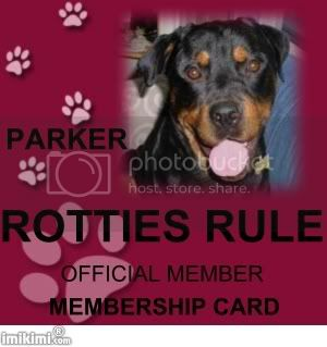 Rotties Rule Member Parker