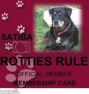 Rotties Rule Member Satiba